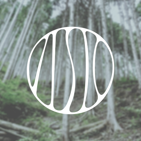 Atelier Sonja Kanno, logo and forest picture