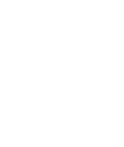 innenwald-icon-white